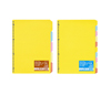 カラー仕切カード(バインダーノート用)